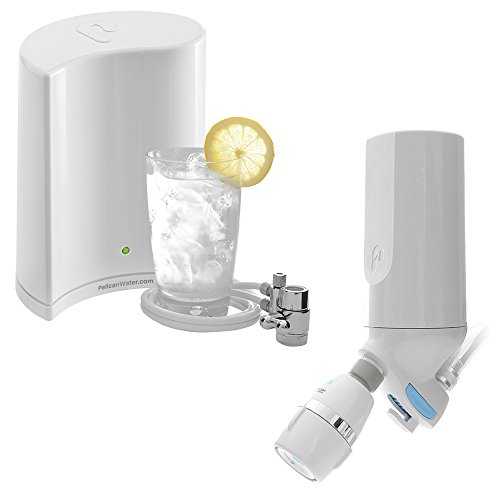 pelican water pws dc premium shower filter and countertop drinking water puri. Black Bedroom Furniture Sets. Home Design Ideas