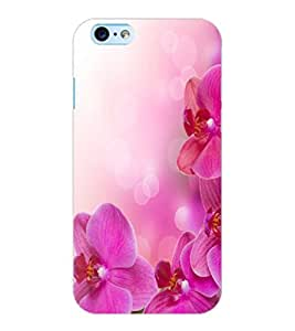 ColourCraft Lovely Flowers Design Back Case Cover for APPLE IPHONE 6S