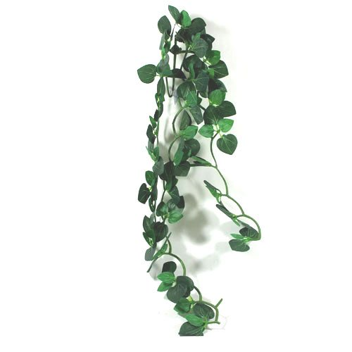 Reptile Vivarium Jungle Silk Plant Amapallo Large