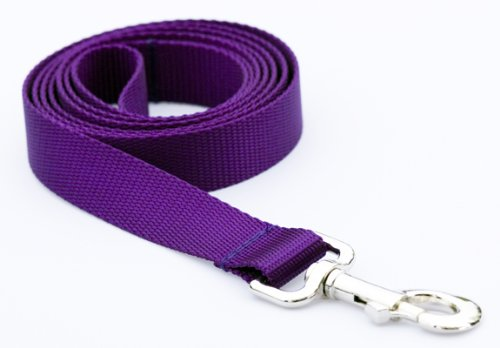 Large Purple Nylon Webbing Dog Leash: 1