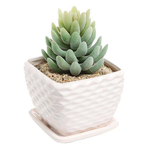 Contemporary White Ceramic Succulent Planter Flower Pot w/ Decorative Wavy Coil Design & Drainage Plate (Planter Pots Indoor compare prices)