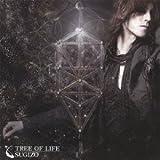 TREE OF LIFE(DVD付)