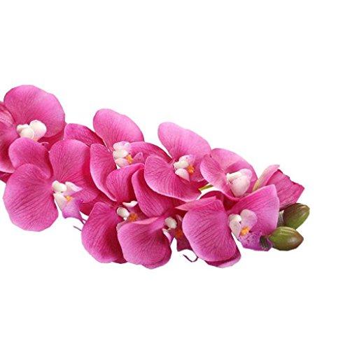 mandy-decor-houseplantsimulation-orchid-phalaenopsis-branch-home-garden-diy-decor-hot-pink