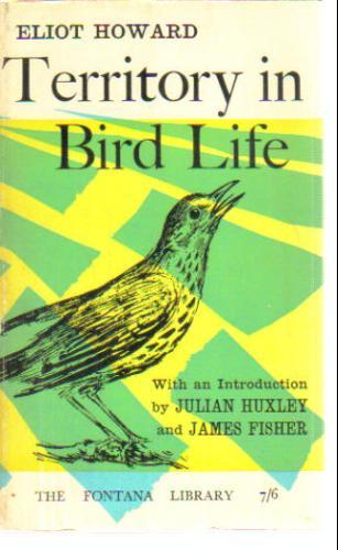 Territory in Bird Life