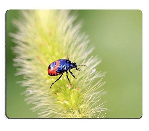 liili-mouse-pad-tappetino-per-mouse-in-gomma-naturale-con-immagine-id-22406589-stinkbug-larve-verde-