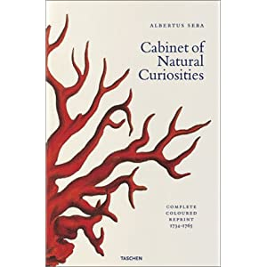 Albertus Seba's Cabinet of Natural Curiosities (Jumbo)