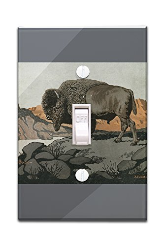 Nature Magazine - View of a Buffalo (Light Switchplate Cover)