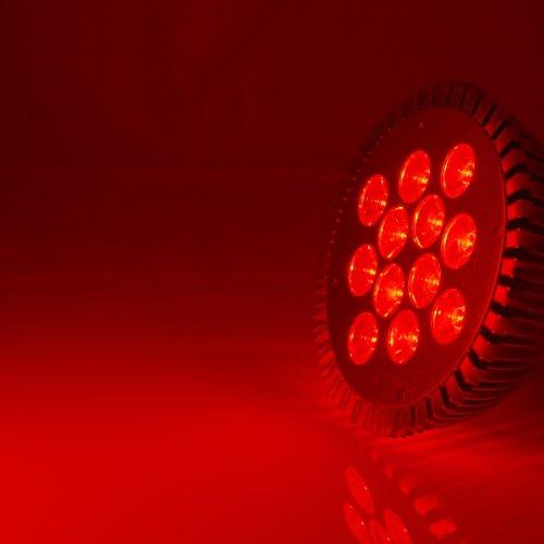 Abi 12W Par38 Led Grow Light Bulb For Flowering (Red 610-630Nm)