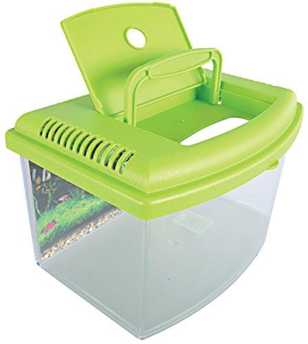 Zolux-Travel-Box-Aquarium-zum-Transport-oder-Aufzucht-von-Fischen-22-cm