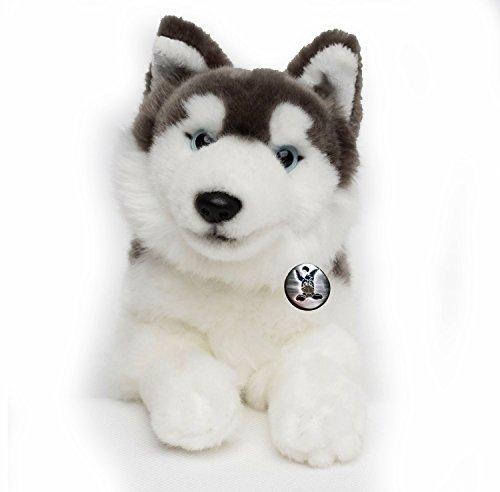 husky-nanuk-schlittenhund-liegend-30-cm-pluschtier-von-kuscheltierebiz