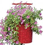 Topsy Turvy® Hummingbird Upside Down Planter - red