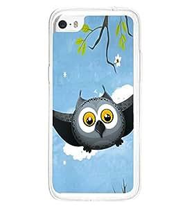 Grey Owl Cartoon 2D Hard Polycarbonate Designer Back Case Cover for Apple iPhone 5C