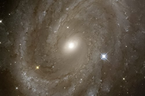 New 5X7 Space Photo: Variable Stars In A Distant Spiral Galaxy