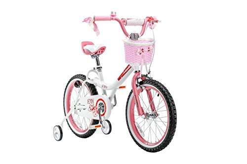 Royalbaby Jenny Princess Pink Girl's Bike with Training Wheels and Basket, Perfect Gift for Kids, 18 inch wheels 1