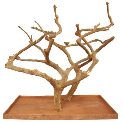 Cheap Double Java Wood Tree (AE400D)