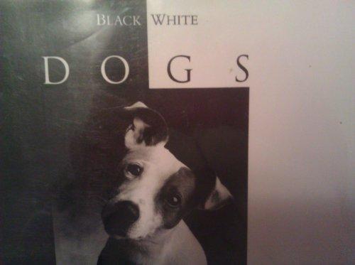Black & White Dogs PDF