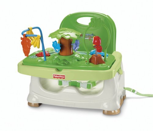 Great Features Of Fisher-Price Booster Seat, Rainforest