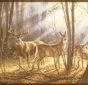 deer wallpaper border wd4100b