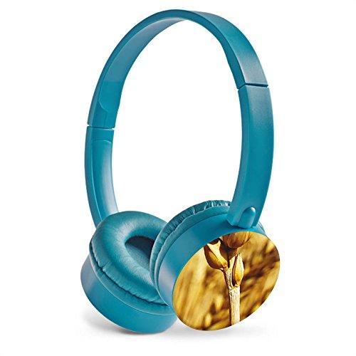 kopfhorer-stereo-hifi-horer-blau-mit-bild-motiv-individeuelles-design-grain-spike