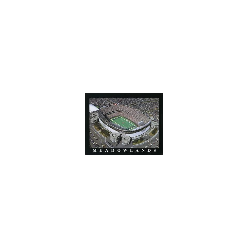 New York Jets Jets Stadium Aerial Picture NFL, Standard Frame, Cherry