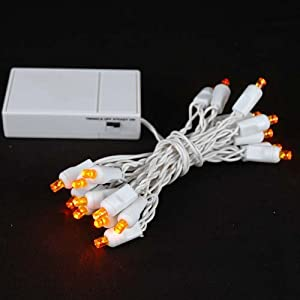 Amazon.com : Novelty Lights, Inc. BAT20 LED Battery Operated Christmas Mini Light String Set ...