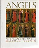 Angels: An Endangered Species (0671706500) by Malcolm Godwin