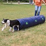 Geschiktheid voor honden met hindernissen en tunnels