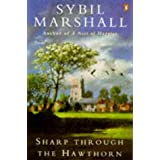 Sharp Through the Hawthorn ~ Sybil Marshall