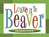 Leave it to Beaver, Season Four: Beaver's Old Buddy
