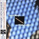 David Gray White Ladder + 1 Tr