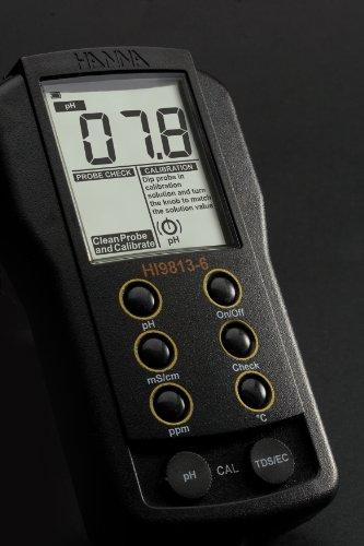 Hanna Instruments Hi 9813 6n Waterproof Phectds Meter Clean And