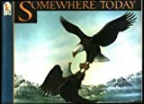 Somewhere Today (156402377X) by Kitchen, Bert