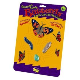 Butterfly Life Cycle Stages Characters, Plastic - 4 Piece Set; no. ILP4760 by Insect Lore