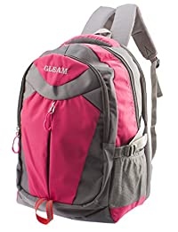 GLEAM Trendy Multicolour School Bag ( Pink & Grey )