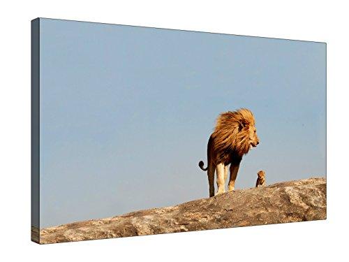 """Animale Leone maschio e cucciolo su Hill varie taglie-XL-Classic Lite Frame (20m) o (Pro Chunky (40mm) cornice di legno, artistica, Tela di alta qualità Artisan Gallery Premium in policotone da appendere alla parete da appendere Pict, 30 x 20"""" (76 x 51cm)"""