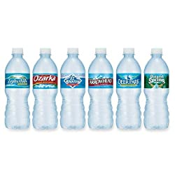 Spring Water, 16.9 Oz. Bottles, Case Of 24