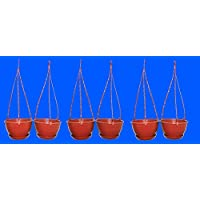 First Smart Deal Plastic Hanging Pot Brown - Pack Of 6