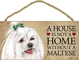 """Dog Lovers' Decorative Wooden Wall Plaque Sign 10' x 5"""" - A House Is Not A Home Without A Maltese (with bow)"""