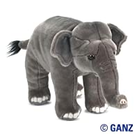 Webkinz Signature Asian Elephant by Ganz USA LLC
