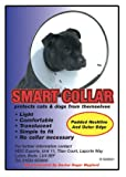 Smart Collar for Cats & Dogs (Size 3, 31-39cm)