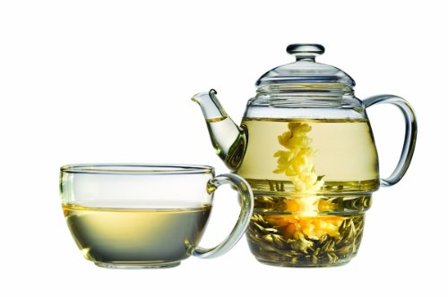 Glass Electric Tea Kettle front-20780