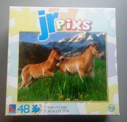 Jr Pixs Pony Pals Puzzle - 48 Pieces