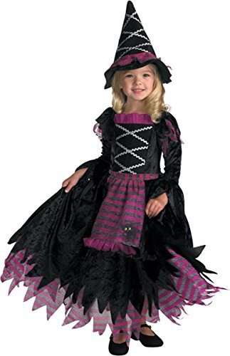 Disguise Fairytale Witch Girls Costume