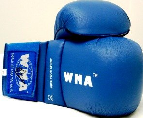 Martial Arts Karate CE Mitt/Gloves Classic PU Imported Mould Blue PPE Large