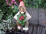 Flower Pot Man Garden Ornament - Great gardener gift for this summer (Flower Pot Log Man with a novel Bill and Ben type look)