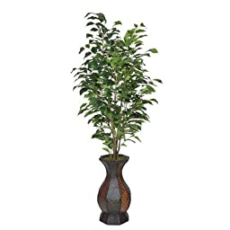 Artificial Ficus Tree in Decorative Vase I Leaves Color: Green