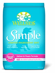 Wellness Simple Natural Grain Free Limited Ingredient Dry Dog Food, Salmon & Potato Recipe, 24-Pound Bag