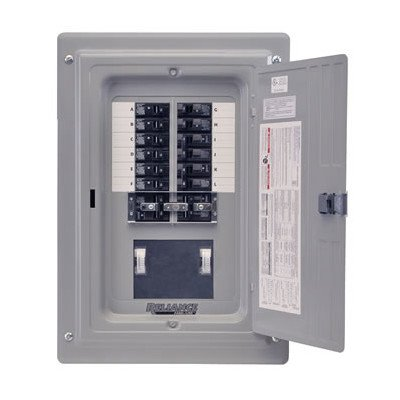 Reliance Pre-Wired Transfer Panel - 15,000 Watt, 12 Circuit, Model# Trc1006Cp9