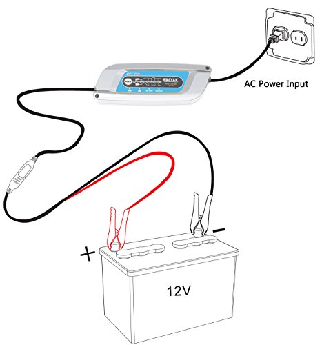 erayak 12v fully automatic 8 step battery charger with
