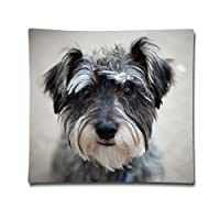 "Yecz Custom Zippered Pillow Cushion Case Throw Pillow Covers 18""x18"" by buoluo"